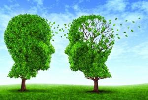 Аневризмы сосудов головного мозга: причины, симптомы и лечение