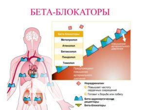 Дефекты межпредсердной перегородки: виды, симптомы и лечение