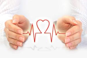 Анатомия и физиология сердца человека