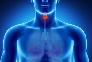 Вегето сосудистая дистония у грудничков, детей, подростков: причины и лечение
