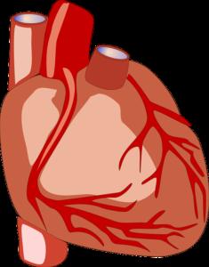 Высокое верхнее артериальное давление: причины, симптомы и особенности лечения